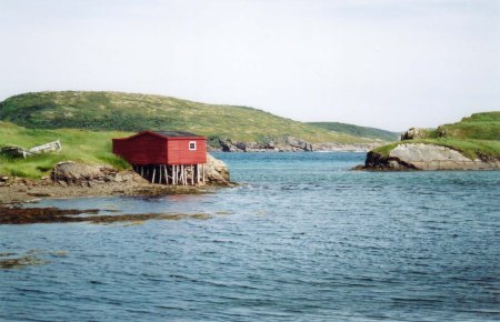 Harbor Scene Nfld