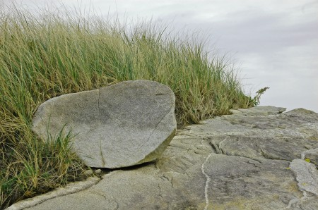 Rocks Among Tall Grass, Kejimkujik Seaside, NS