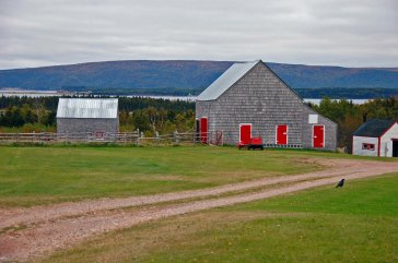 Rural Red-Doored Barn, Near Cape North, Cape Breton, N.S.