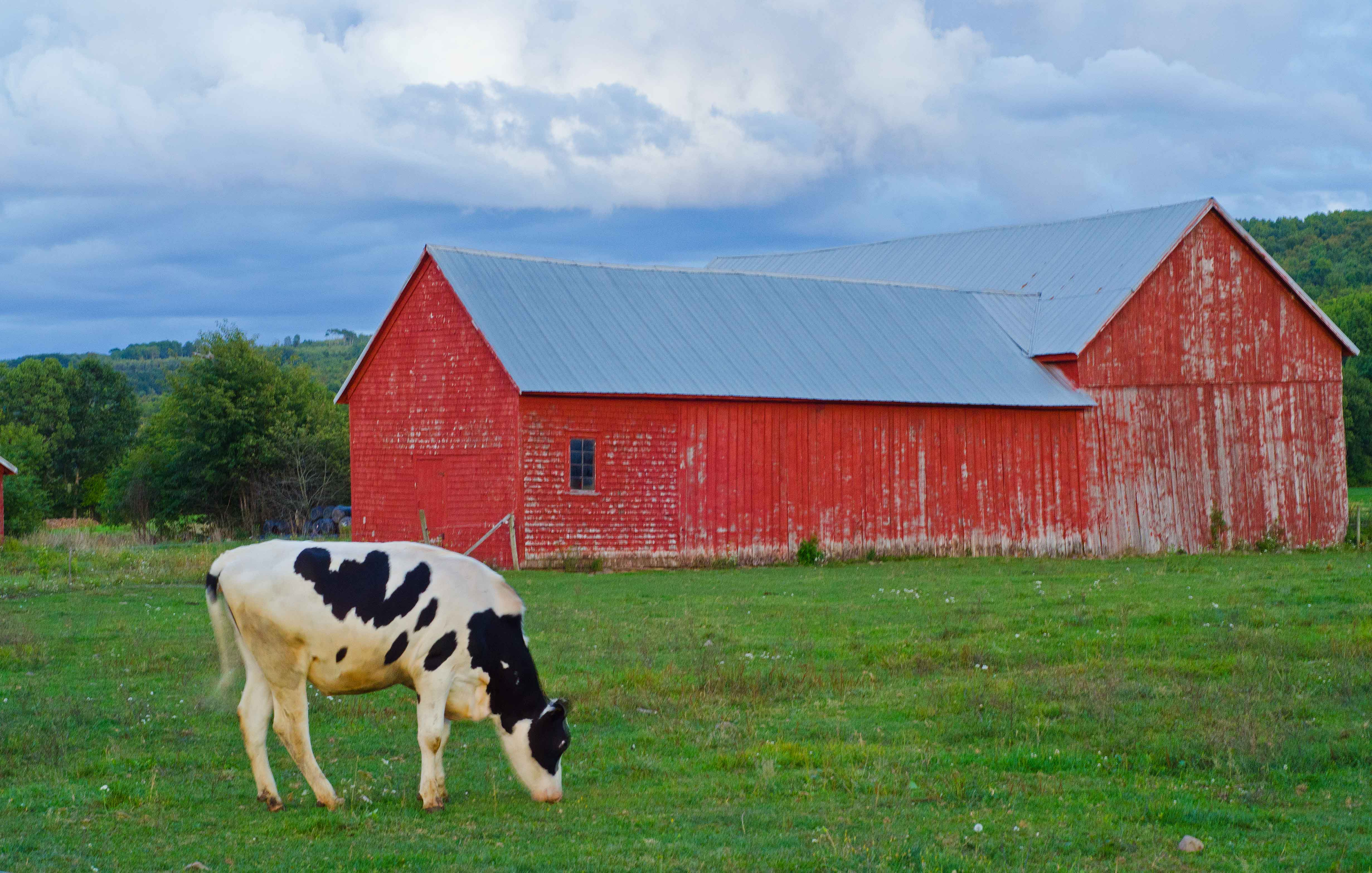 Barns And Cottages Of The Maritimes Part 1 171 O Canada