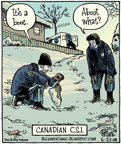 Canadian CSI