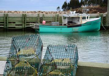 Lobster Cages, Near Parker's Cove, Nova Scotia