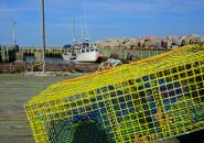 Yellow Lobster Cage, Near Parker's Cove. Nova Scotia