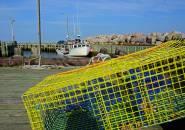 Yellow Lobster Cage, Near Parker's Cove. Nova Scotia