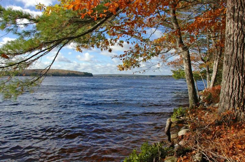 wNova-Scotia-2011248