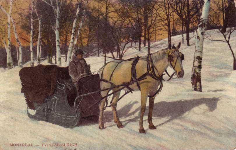 Rural----Winter-Sleigh
