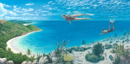 R. Gonsalves -- Beyond the Reef