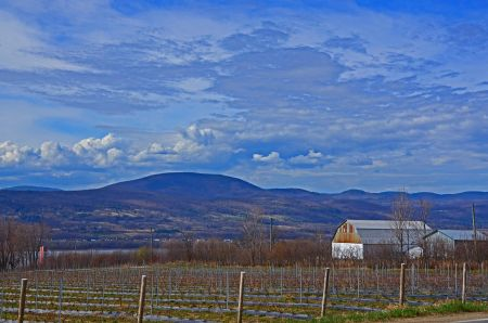 Farm Outside Quebec City