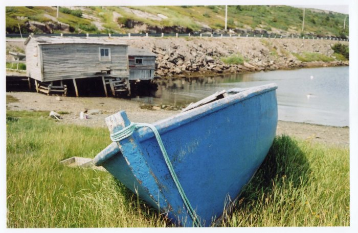 Nfld -- Boat on Grass