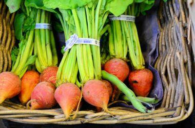 Turnips, Saint John City Market, New Brunswick
