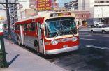 toronto-bus-4
